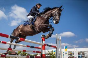Jeździec na koniu skaczący przez przeszkodę
